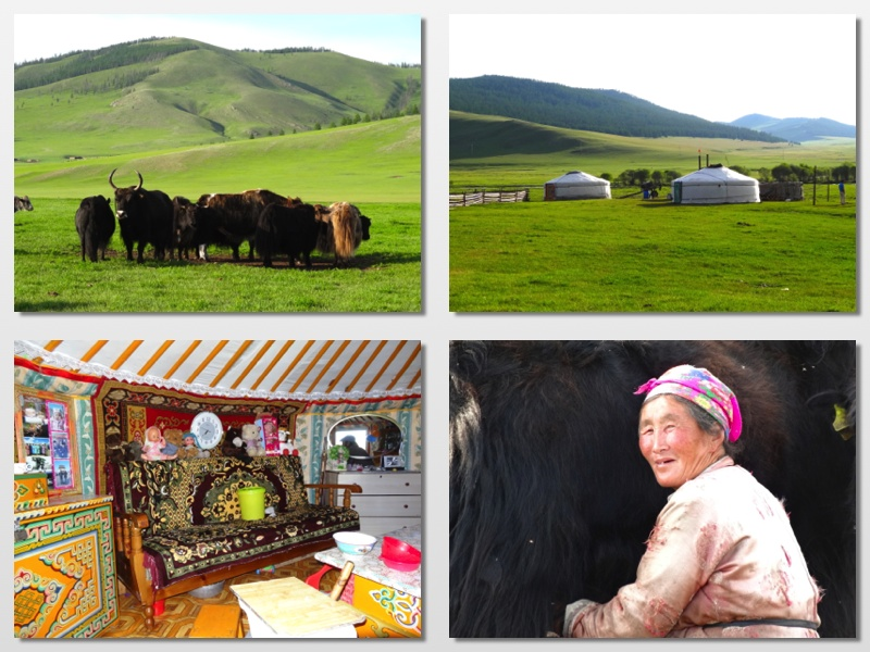 yak herders1